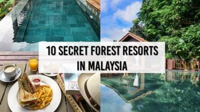 Photo of 10 Secret Forest Resorts In Malaysia For A Relaxing Getaway